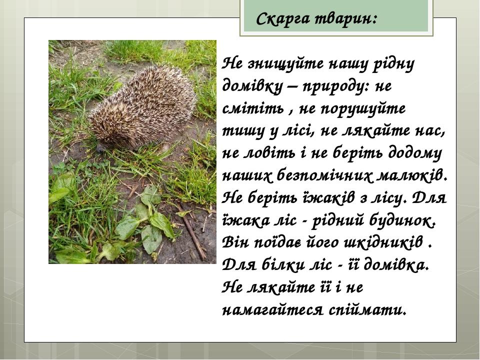 Скарга тварин: Не знищуйте нашу рідну домівку – природу: не смітіть , не порушуйте тишу у лісі, не лякайте нас, не ловіть і не беріть додому наших ...