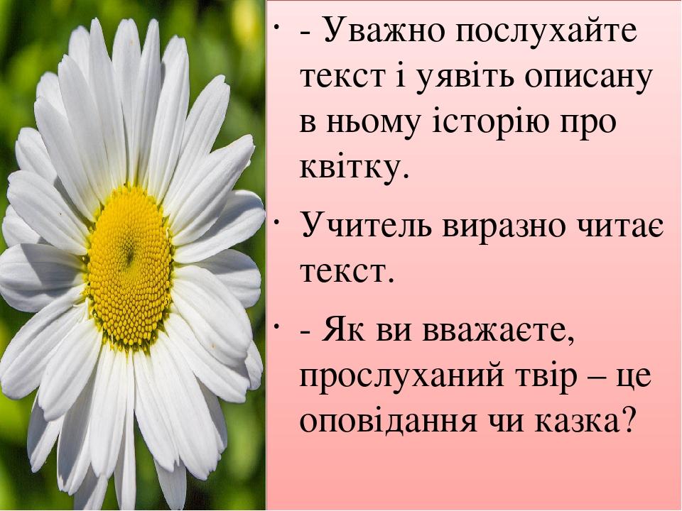 -Уважно послухайте текст і уявіть описану в ньому історію про квітку. Учитель виразно читає текст. -Як ви вважаєте, прослуханий твір – це оповіда...