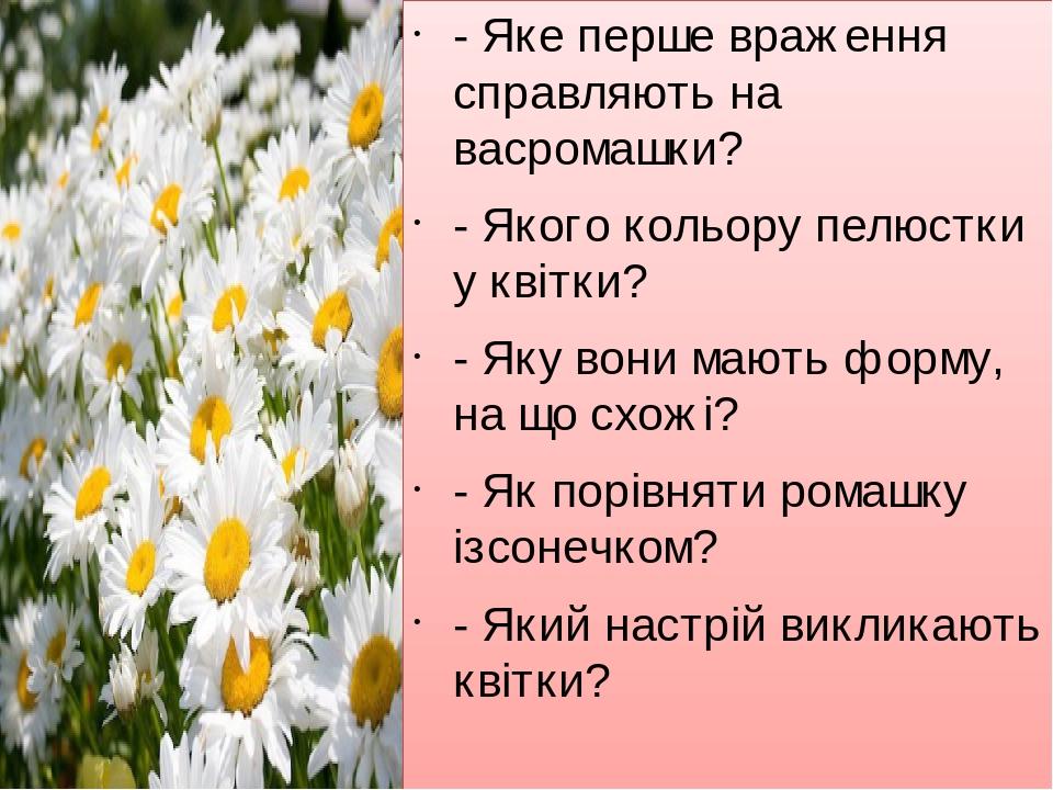 - Яке перше враження справляють на васромашки? - Якого кольору пелюстки у квітки? - Яку вони мають форму, на що схожі? - Як порівняти ромашку ізсон...