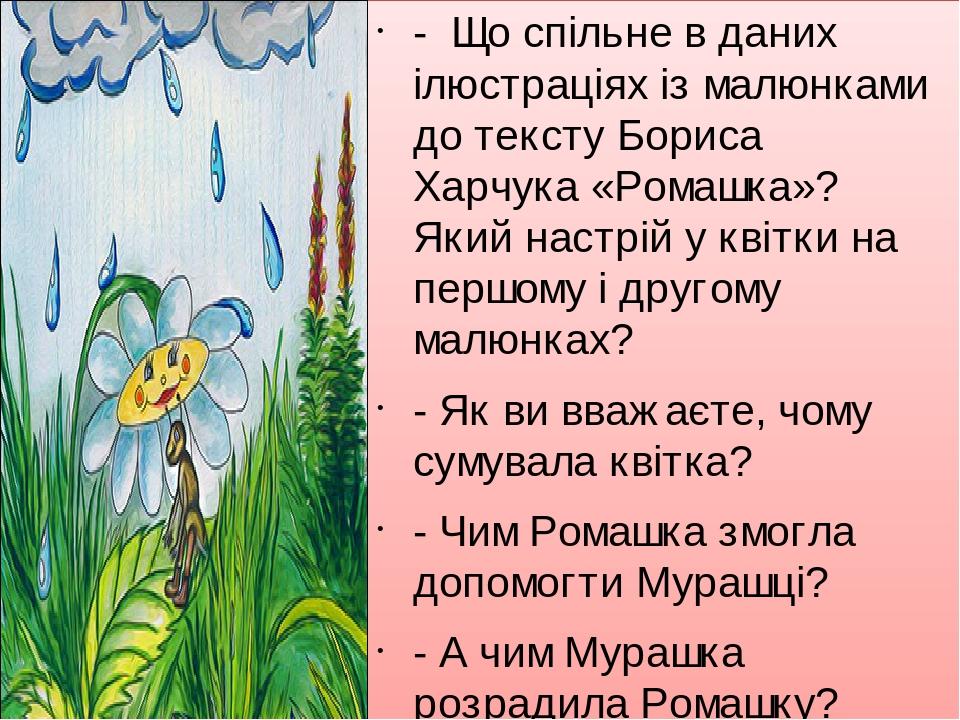 - Що спільне в даних ілюстраціях із малюнками до тексту Бориса Харчука «Ромашка»? Який настрій у квітки на першому і другому малюнках? - Як ви вваж...