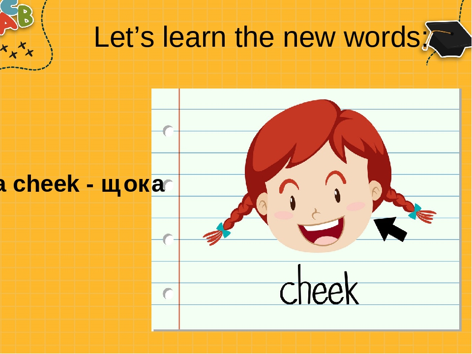 Let's learn the new words: a cheek - щока