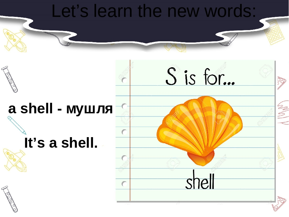 Let's learn the new words: a shell - мушля It's a shell.