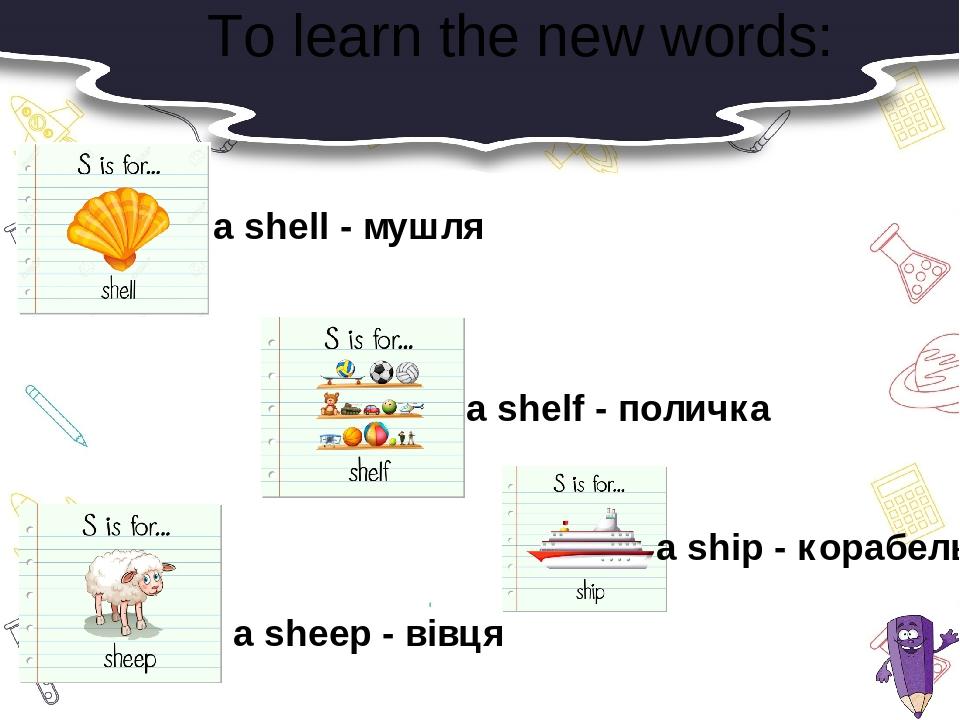 To learn the new words: a shell - мушля a sheep - вівця a shelf - поличка a ship - корабель