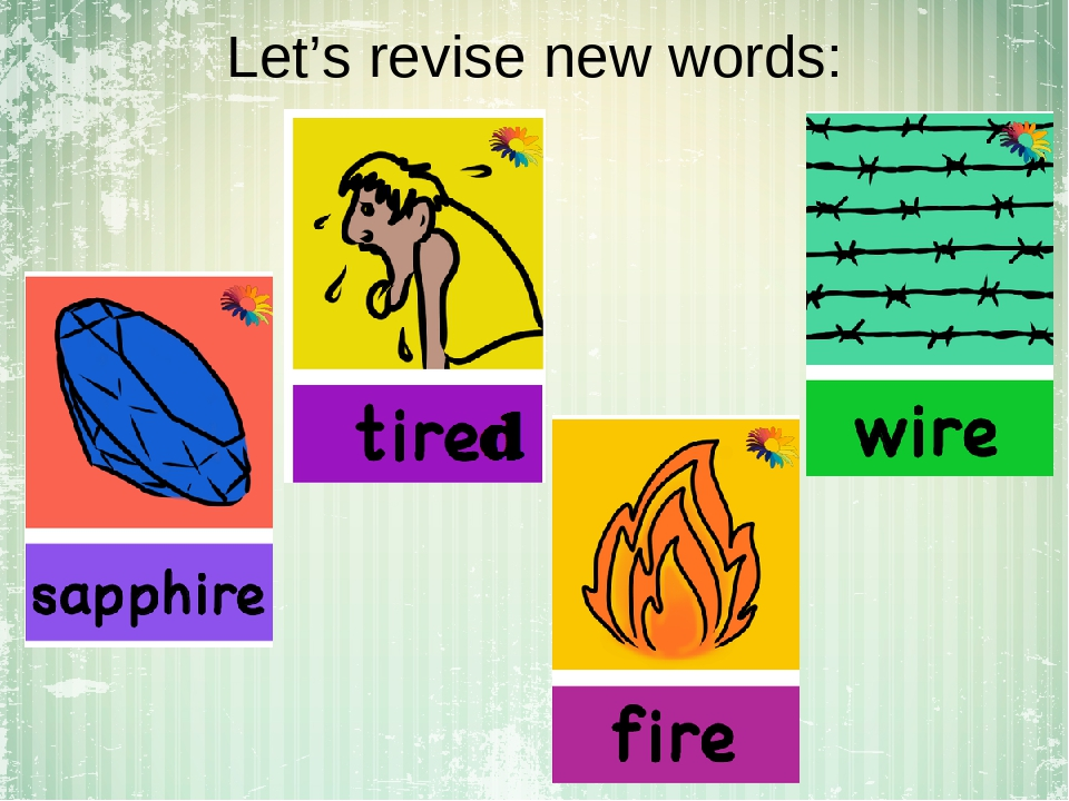 Let's revise new words: