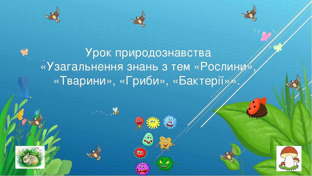 Урок природознавства «Узагальнення знань з тем «Рослини», «Тварини», «Гриби», «Бактерії»».