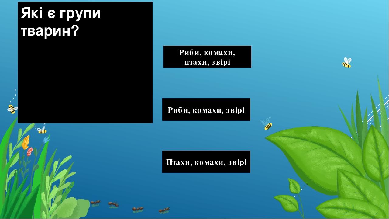 Які є групи тварин? Риби, комахи, птахи, звірі Риби, комахи, звірі Птахи, комахи, звірі Правильный ответ Неправильный ответ Неправильный ответ
