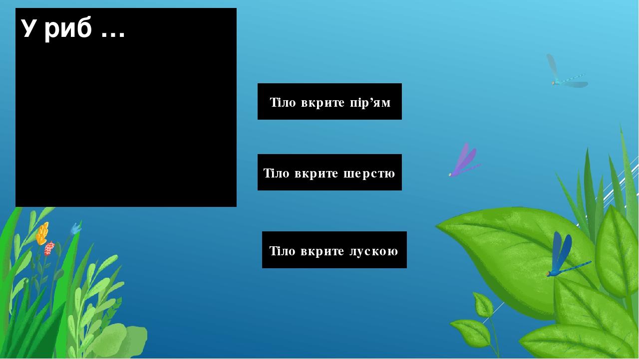 У риб … Тіло вкрите лускою Тіло вкрите шерстю Тіло вкрите пір'ям Правильный ответ Неправильный ответ Неправильный ответ
