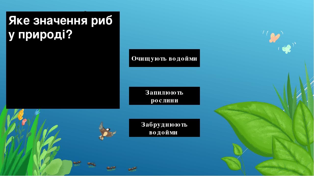 Яке значення риб у природі? Очищують водойми Запилюють рослини Забруднюють водойми Правильный ответ Неправильный ответ Неправильный ответ