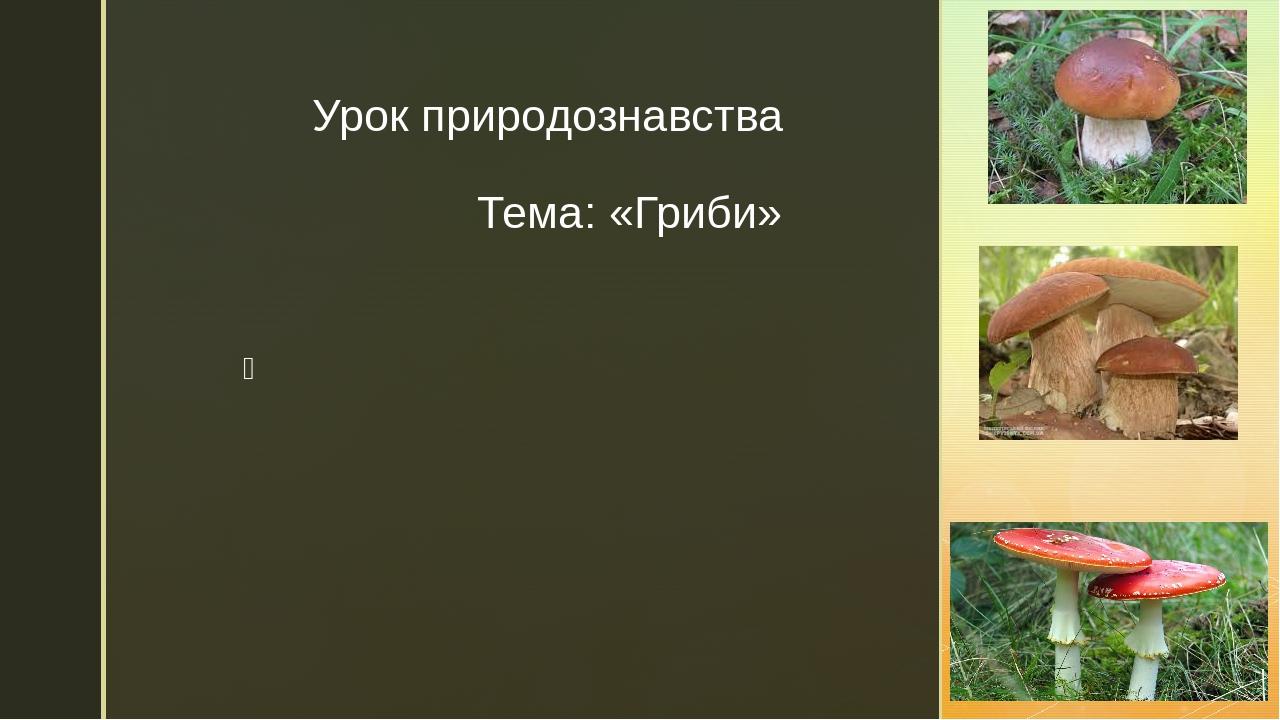 Урок природознавства Тема: «Гриби» z