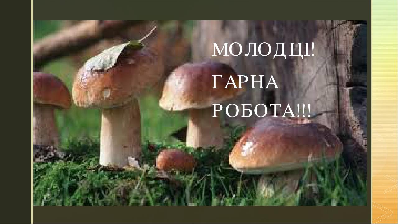 МОЛОДЦІ! ГАРНА РОБОТА!!! z
