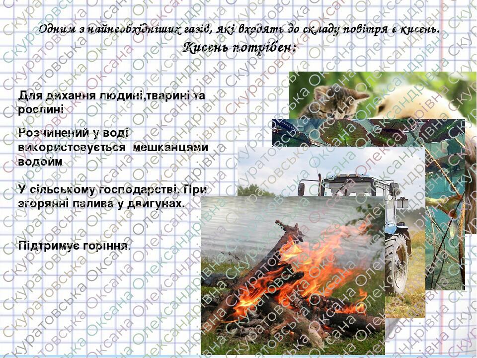 Одним з найнеобхідніших газів, які входять до складу повітря є кисень. Кисень потрібен: Для дихання людині,тварині та рослині Розчинений у воді вик...