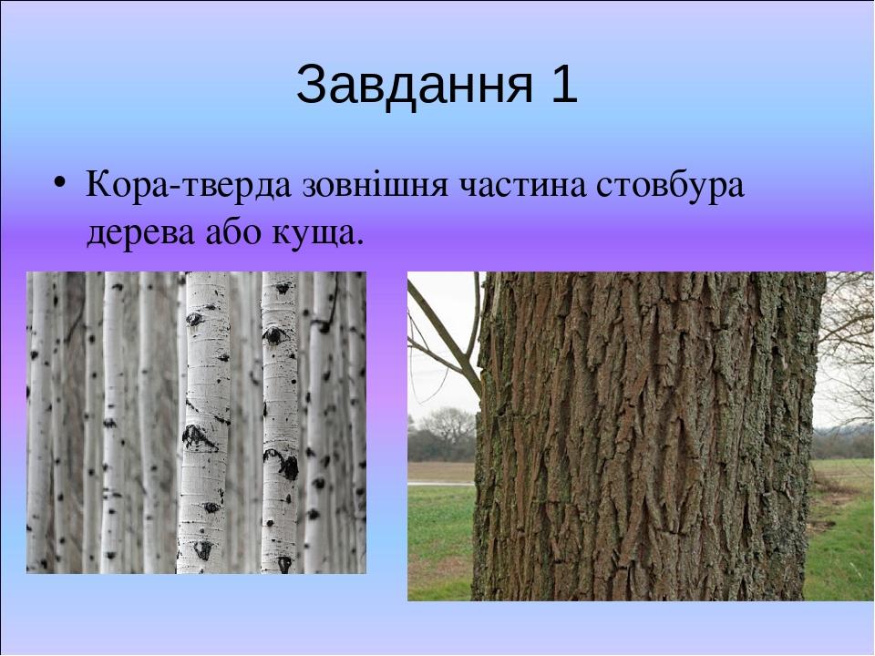 Завдання 1 Кора-тверда зовнішня частина стовбура дерева або куща.