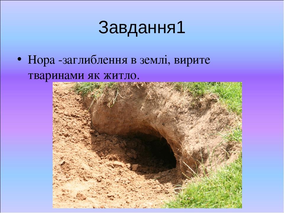 Завдання1 Нора -заглиблення в землі, вирите тваринами як житло.