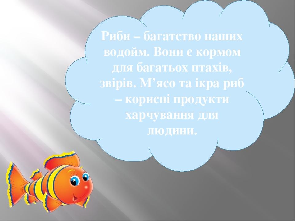 Риби – багатство наших водойм. Вони є кормом для багатьох птахів, звірів. М'ясо та ікра риб – корисні продукти харчування для людини.