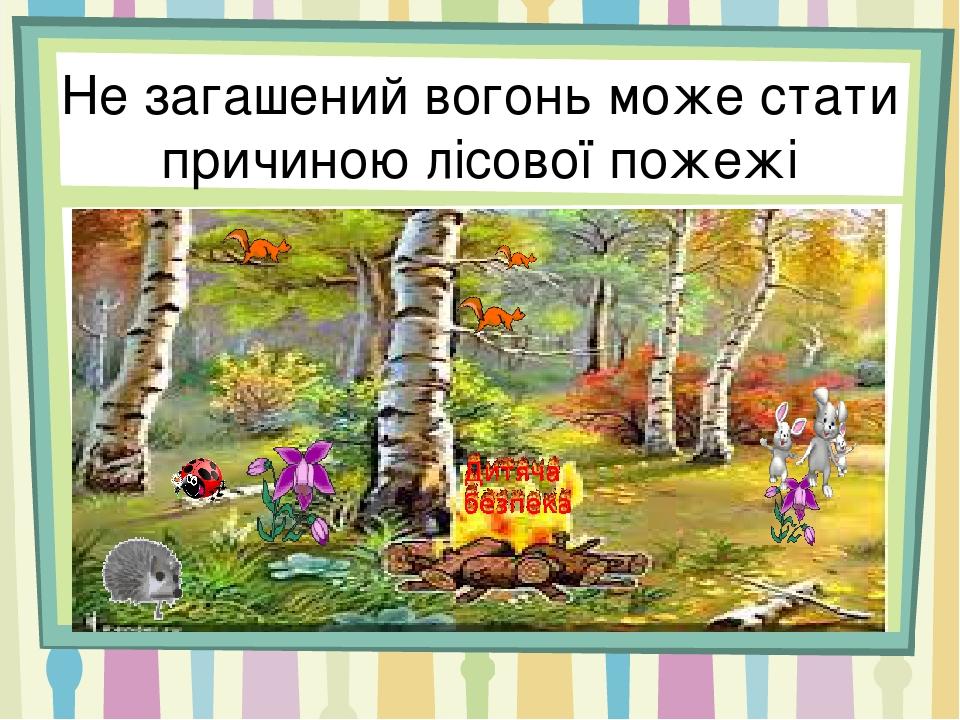 Не загашений вогонь може стати причиною лісової пожежі