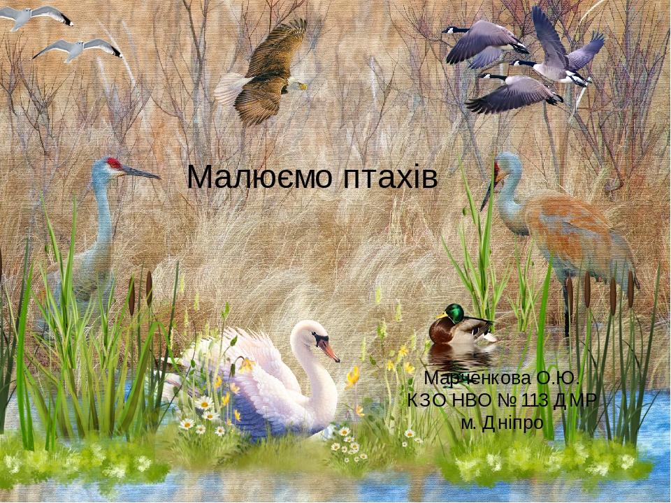 Малюємо птахів Марченкова О.Ю. КЗО НВО № 113 ДМР м. Дніпро