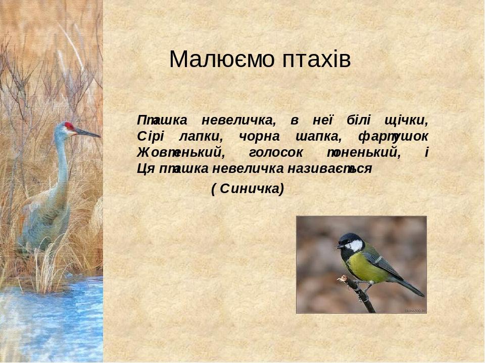 Малюємо птахів Пташка невеличка, в неї білі щічки, Сірі лапки, чорна шапка, фартушок Жовтенький, голосок тоненький, і Ця пташка невеличка називаєть...