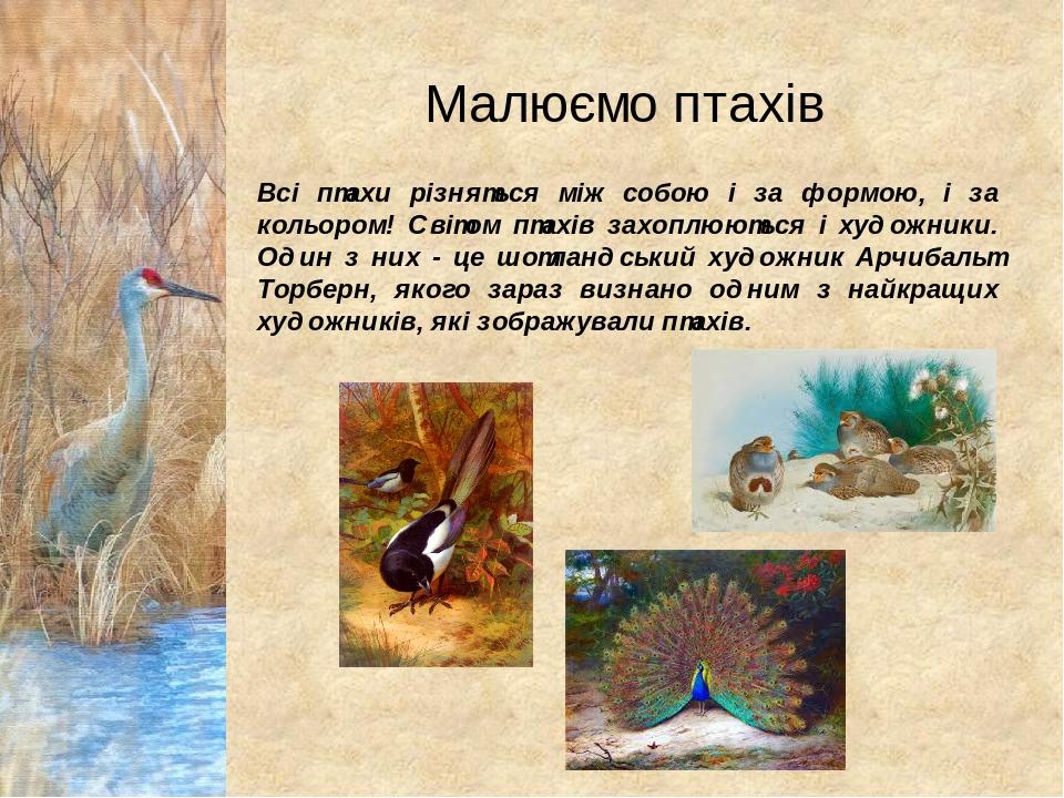 Малюємо птахів Всі птахи різняться між собою і за формою, і за кольором! Світом птахів захоплюються і художники. Один з них - це шотландський худож...