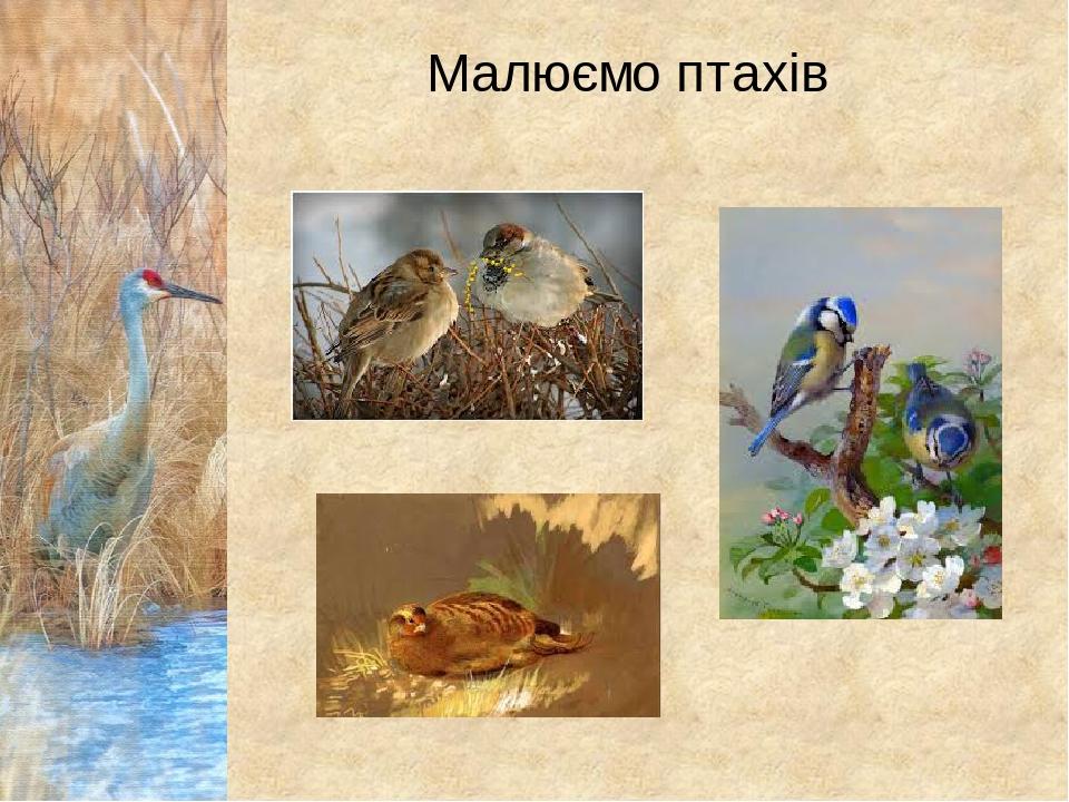 Малюємо птахів