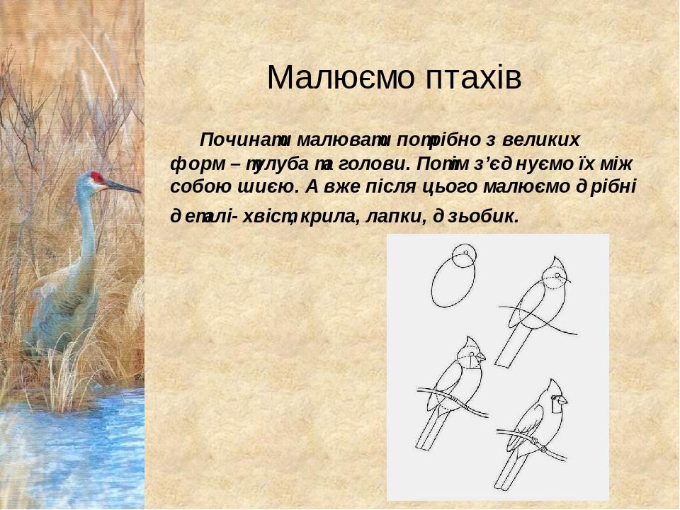 Починати малювати потрібно з великих форм – тулуба та голови. Потім з'єднуємо їх між собою шиєю. А вже після цього малюємо дрібні деталі- хвіст, кр...