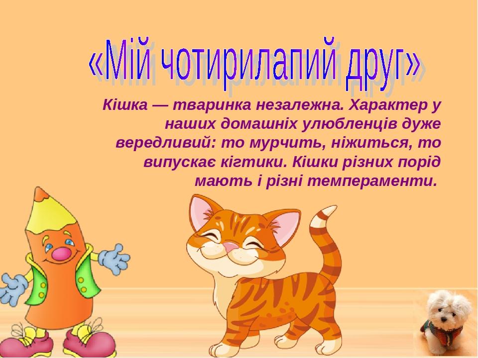 Кішка — тваринка незалежна. Характер у наших домашніх улюбленців дуже вередливий: то мурчить, ніжиться, то випускає кігтики. Кішки різних порід маю...