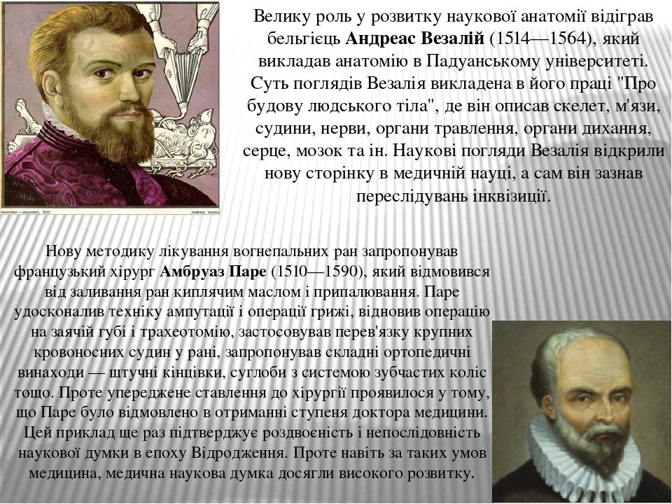 Велику роль у розвитку наукової анатомії відіграв бельгієць Андреас Везалій (1514—1564), який викладав анатомію в Падуанському університеті. Суть п...
