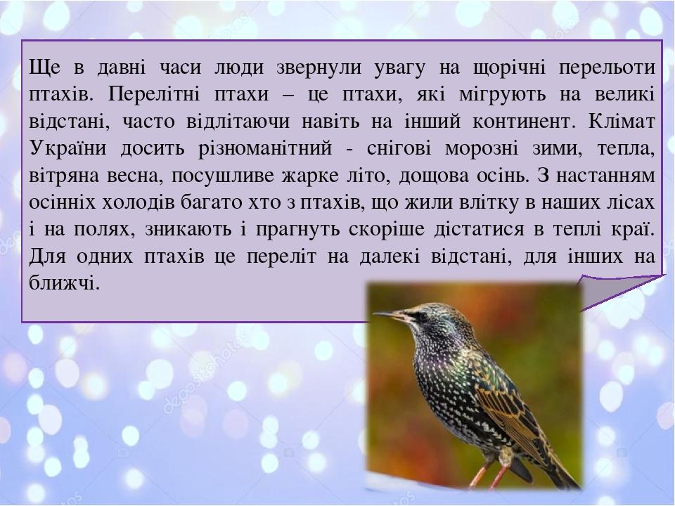 Ще в давні часи люди звернули увагу на щорічні перельоти птахів. Перелітні птахи – це птахи, які мігрують на великі відстані, часто відлітаючи наві...