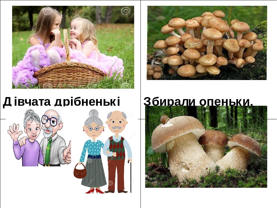 Дівчата дрібненькі Збирали опеньки. Дідита баби Брали білі гриби