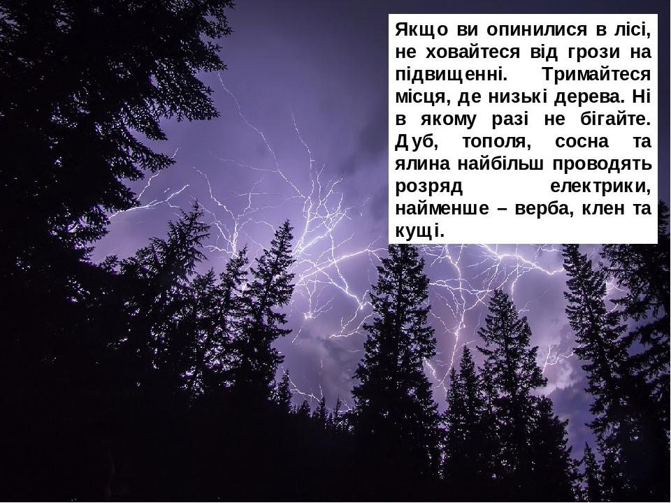 Якщо ви опинилися в лісі, не ховайтеся від грози на підвищенні. Тримайтеся місця, де низькі дерева. Ні в якому разі не бігайте. Дуб, тополя, сосна ...