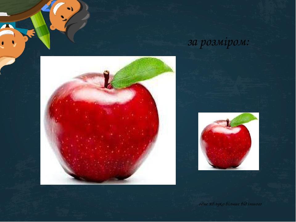 за розміром: одне яблуко більше від іншого