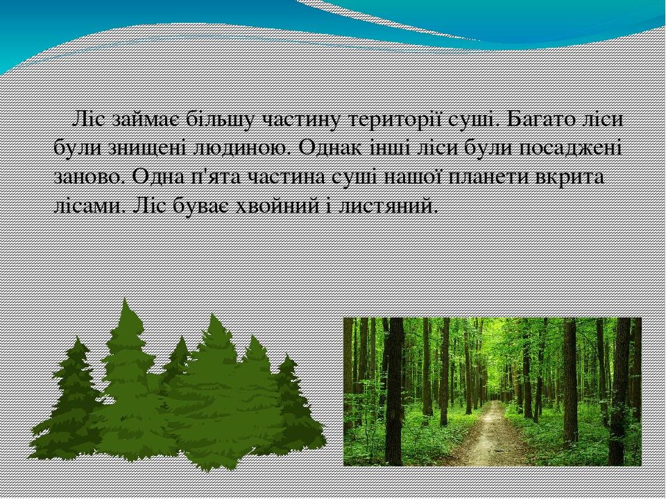 Ліс займає більшу частину території суші. Багато ліси були знищені людиною. Однак інші ліси були посаджені заново. Одна п'ята частина суші нашої пл...
