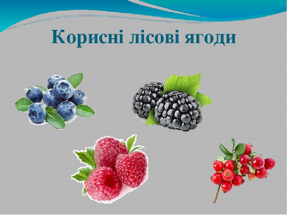 Корисні лісові ягоди