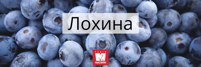 10 колоритних українських слів про літо, які прикрасять ваше мовлення - фото 404998