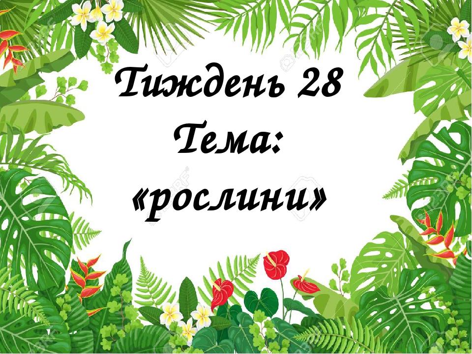 Тиждень 28 Тема: «рослини»