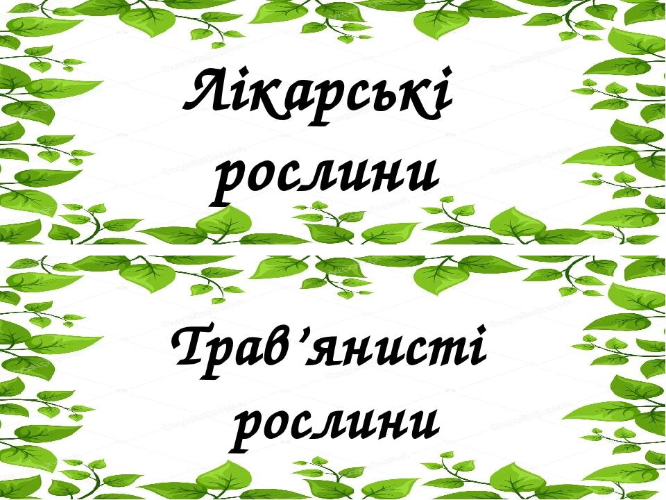 Лікарські рослини Трав'янисті рослини