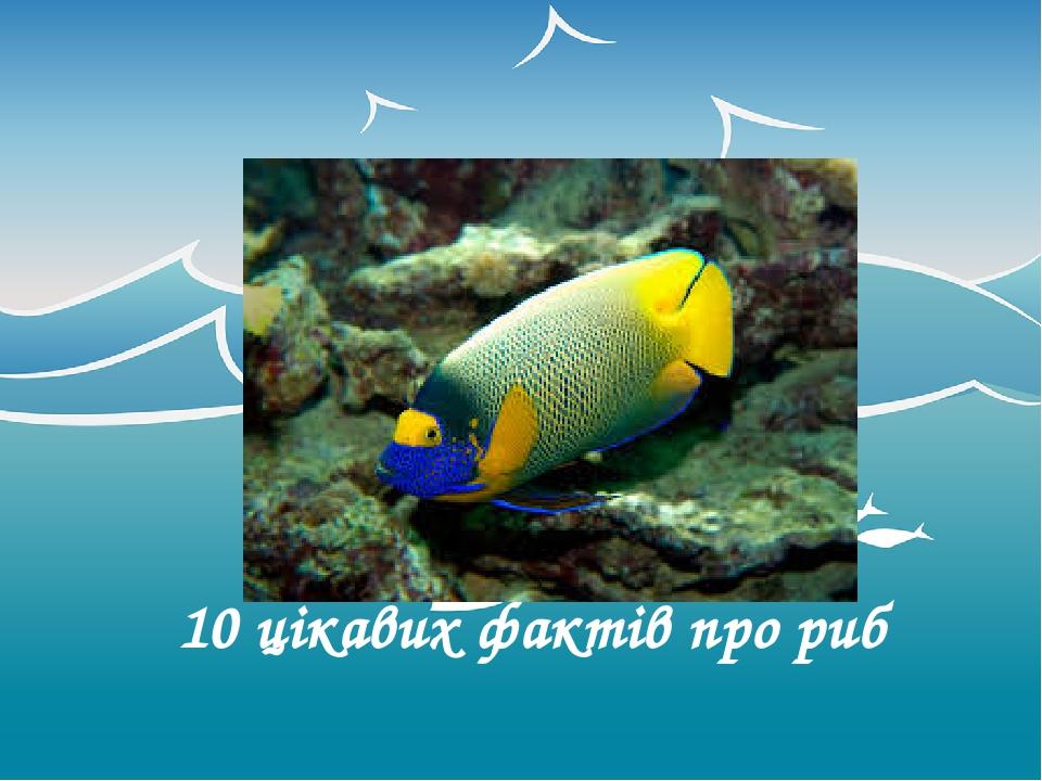 10 цікавих фактів про риб Оригинальные шаблоны для презентаций: https://presentation-creation.ru/powerpoint-templates.html Бесплатно и без регистра...