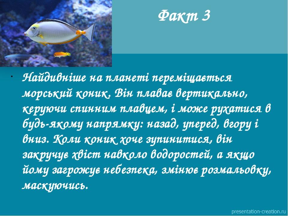 Факт 3 Найдивніше на планеті переміщається морський коник. Він плаває вертикально, керуючи спинним плавцем, і може рухатися в будь-якому напрямку: ...