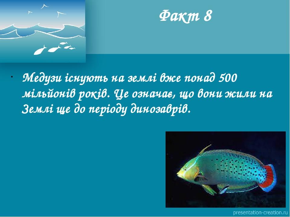 Медузи існують на землі вже понад 500 мільйонів років. Це означає, що вони жили на Землі ще до періоду динозаврів. Факт 8
