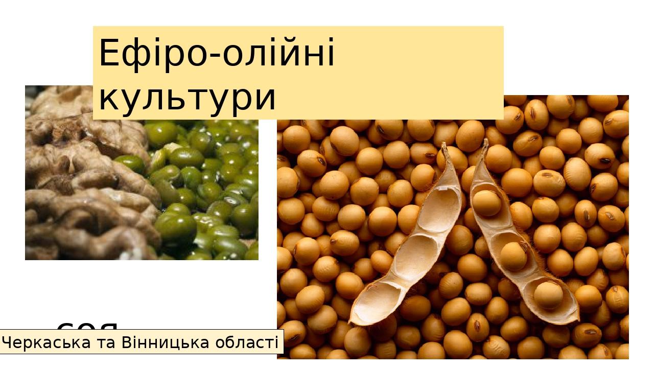 соя Ефіро-олійні культури Черкаська та Вінницька області