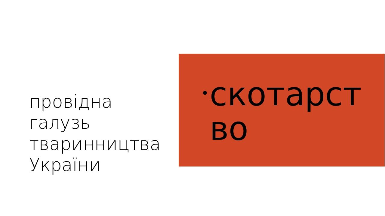 провiдна галузь тваринництва України  скотарство