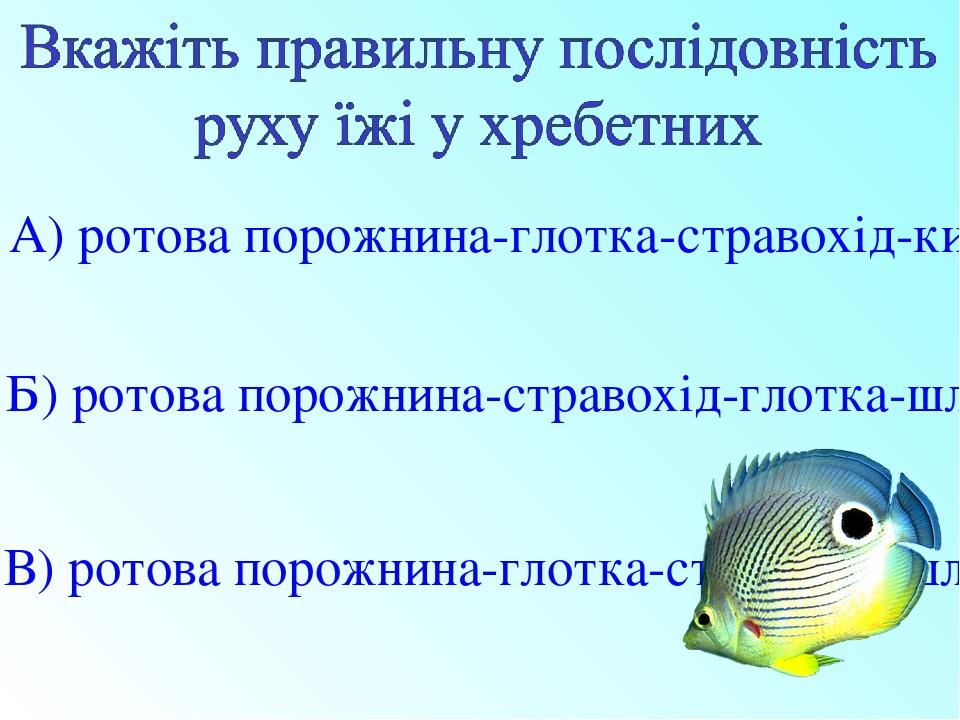 А) ротова порожнина-глотка-стравохід-кишечник-шлунок Б) ротова порожнина-стравохід-глотка-шлунок-кишечник В) ротова порожнина-глотка-стравохід-шлун...
