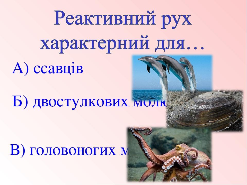 В) головоногих молюсків Б) двостулкових молюсків А) ссавців