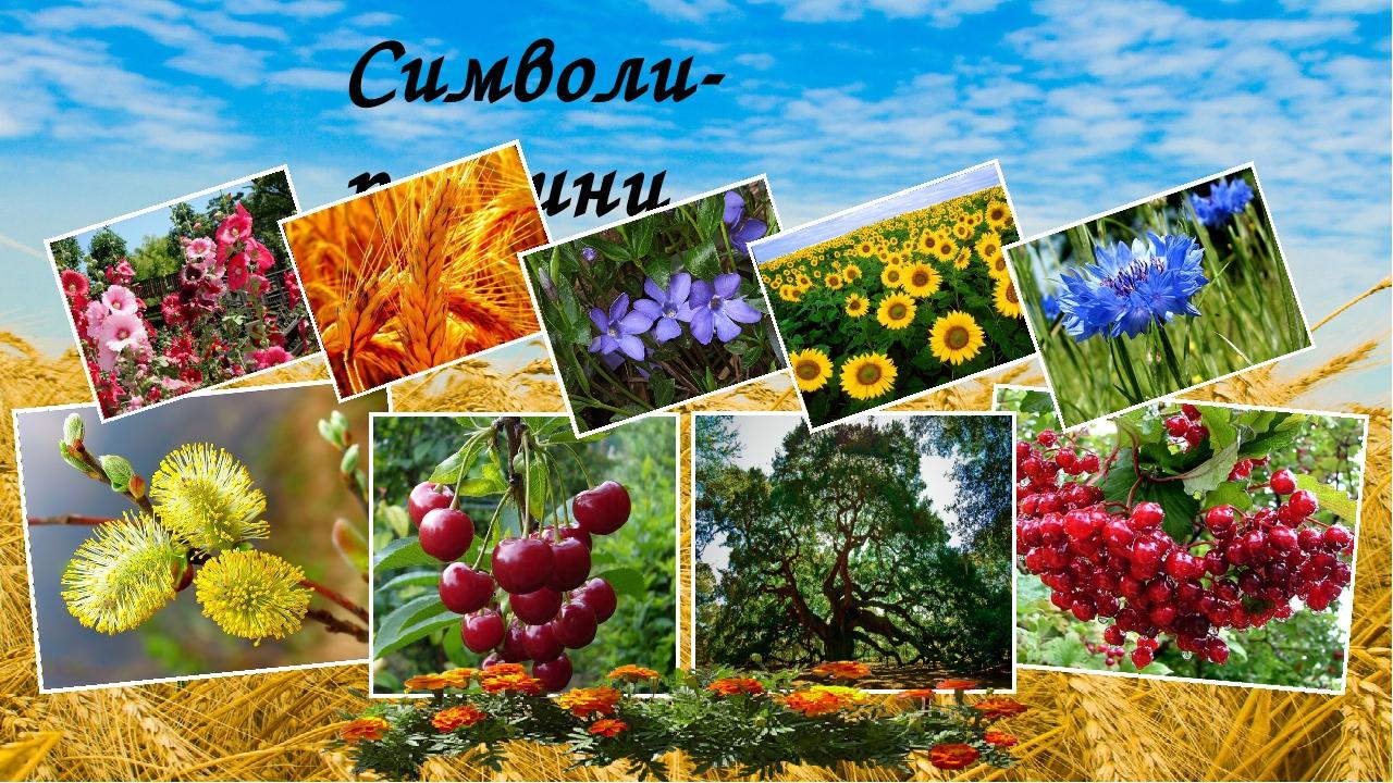 Символи- рослини