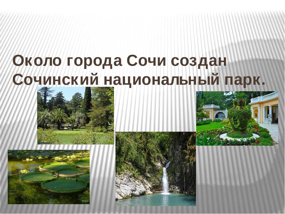 Около города Сочи создан Сочинский национальный парк.