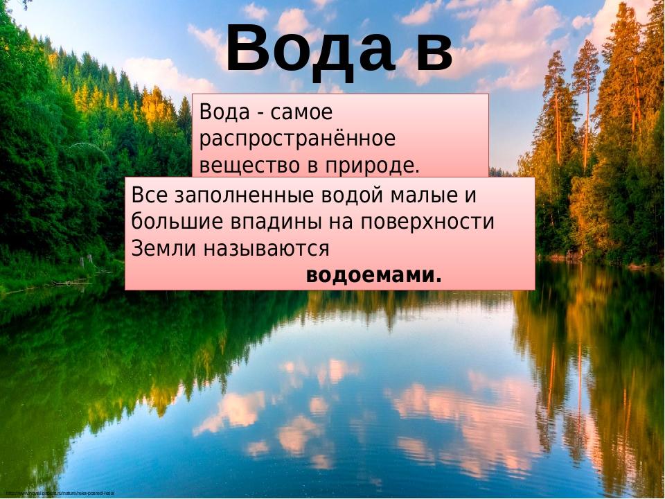 Вода в природе http://www.hqwallpapers.ru/nature/reka-posredi-lesa/ Вода - самое распространённое вещество в природе. Все заполненные водой малые и...