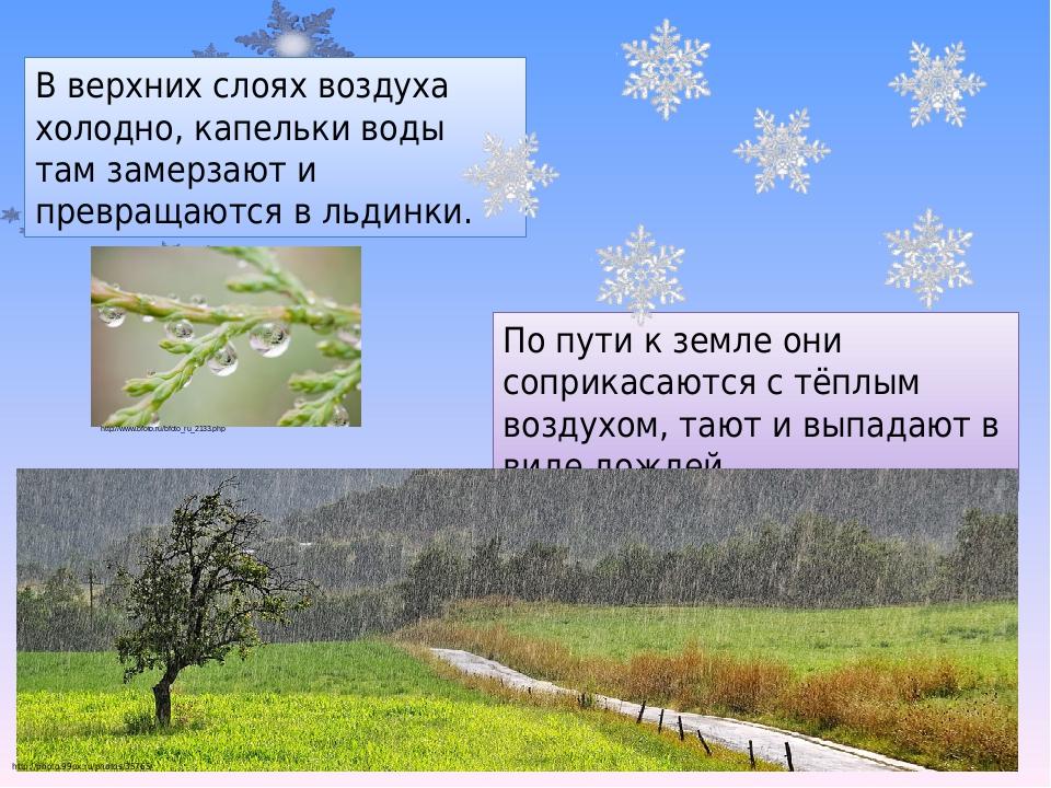 В верхних слоях воздуха холодно, капельки воды там замерзают и превращаются в льдинки. По пути к земле они соприкасаются с тёплым воздухом, тают и ...