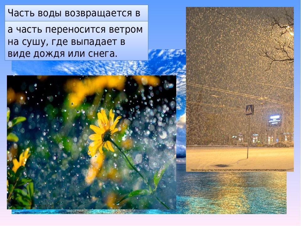 Часть воды возвращается в океан, а часть переносится ветром на сушу, где выпадает в виде дождя или снега. http://www.zastavki.com/rus/Nature/Sea/wa...