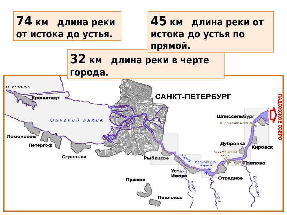 74 км длина реки от истока до устья. 32 км длина реки в черте города. 45 км длина реки от истока до устья по прямой.