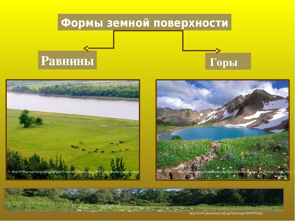 Формы земной поверхности Равнины Горы http://900igr.net/fotografii/geografija/Vostochno-Evropejskaja/005-Luga-Russkoj-ravniny.html http://www.naekr...