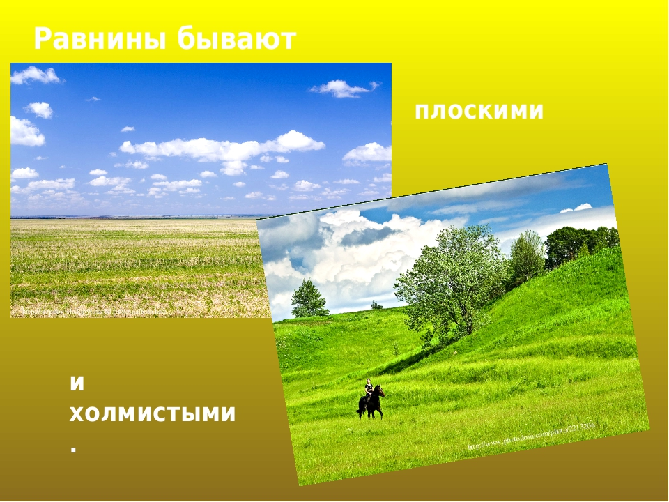 Равнины бывают плоскими и холмистыми. http://stepnoy-sledopyt.narod.ru/vesna/foto.htm http://www.photodom.com/photo/2213206